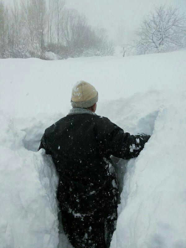 برف بانه