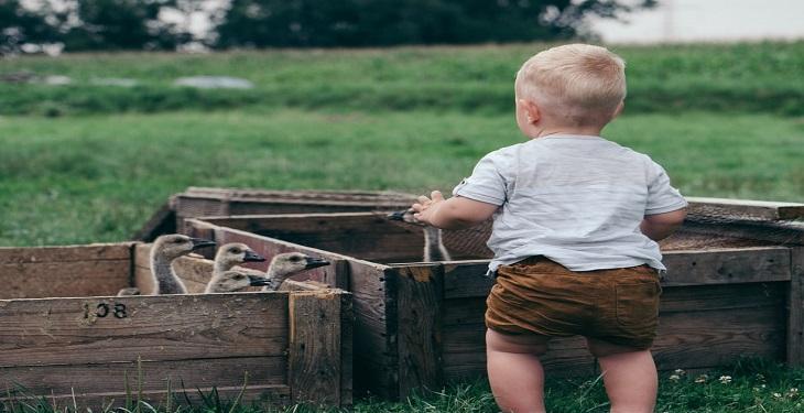 baby-boy-in-the-farm