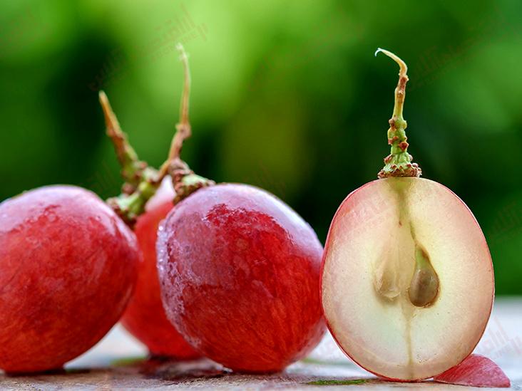 فواید انگور