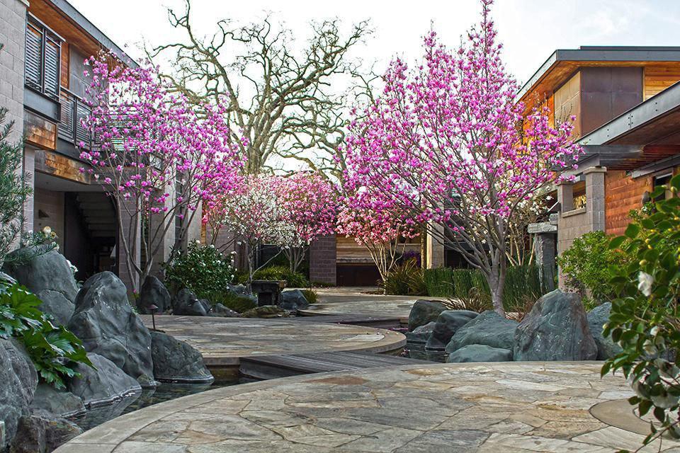 هتل های محیط زیستی3-BARDESSONO HOTEL AND SPA