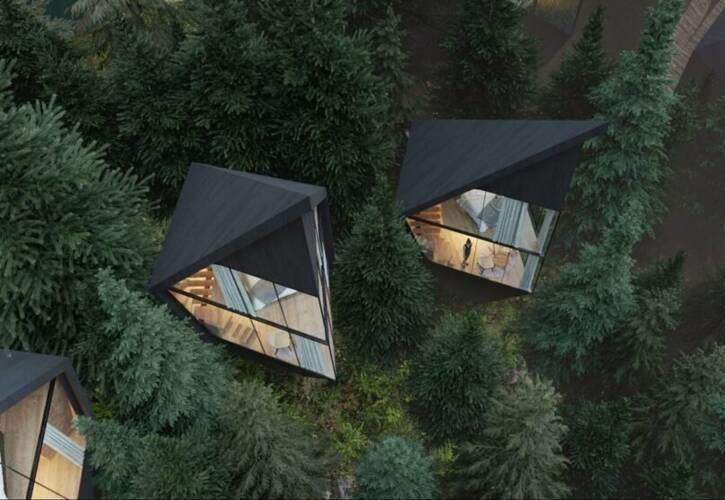 اقامت جنگلی