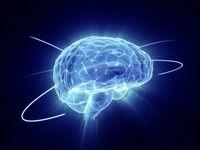 ۱۱ باور اشتباه درباره قدرت مغز