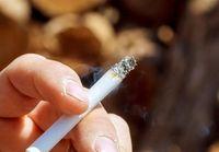 سیگار هم رجیستری میشود