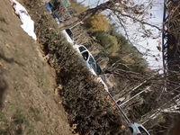 خودکشی مرد ۳۵ساله از روی پل طبیعت +عکس