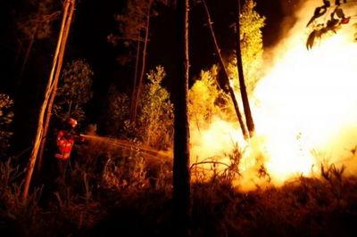 آتش سوزی در حاشیه جنگل خیرودکنار نوشهر