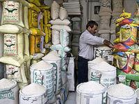 دلالان؛ برندگان بازار برنج