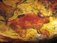 گاومیش ۳۶ هزار ساله! +عکس