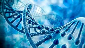 ژن جدید «پارکینسون» شناسایی شد