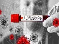 آیا ویروس کرونا در فصل گرما از بین میرود یا خیر؟