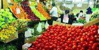 قیمت گوجه فرنگی همچنان در اوج است