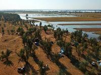 پناه بردن سیلزدگان خوزستان به جنگل +عکس