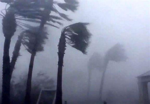 خسارت طوفان قرن در فلوریدا +فیلم