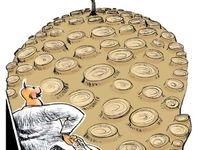 شفافسازی به سبک شهرداری تهران! (کاریکاتور)