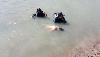 جوانِ غرقشده، زندگی دوباره یافت
