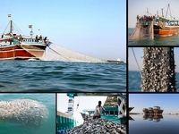 بلای خانمانسوز «ترال» برای صیادان خلیج فارس