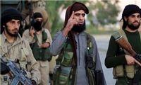 داعش دنبال جایگزینی درآمدهای نفتی با فروش اعضای بدن