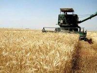 آوار سیلی از احضاریه، اخطاریه و اجرایه بر سر کشاورزان در آستانه سال نو/ اجرا نشدن قانون امهال وام کشاورزان خسارت دیده