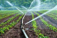 صرفه جویی سالانه ۲۷۵میلیون متر مکعب آب کشاورزی