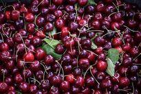 میوههای قرمز چگونه باعث کاهش وزن میشوند؟!
