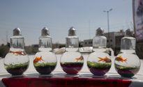 بازار گل تهران در آستانه سال نو +تصاویر