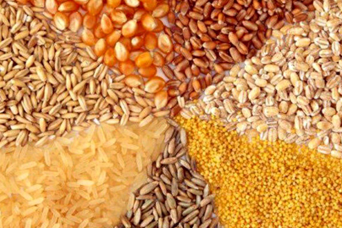 قیمت مصوب نهادههای دامی افزایش یافت/ قیمت شیرخام بازنگری شود