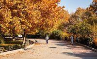 پاییز در تهران! +عکس