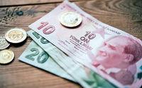 راههای خروج بازار ارز ترکیه از بحران چیست؟