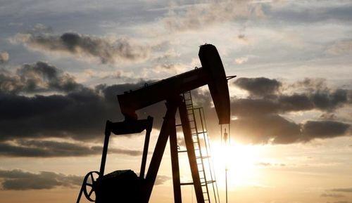 قیمت هفتگی نفت به طور چشمگیری افزایش یافت