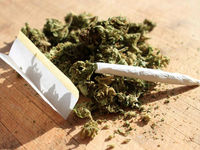 ١٣درصد از معتادان کشور گل مصرف میکنند