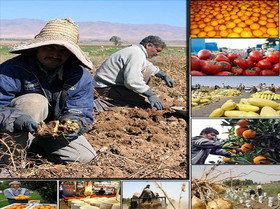 تصویب ۴۲۵۵ هزار میلیارد ریال وام، برای رفع موانع تولید بخش کشاورزی