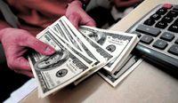 پیش بینی قیمت دلار برای فردا ۱۴دی ماه/ بازار ارز جذابیت سرمایهگذاری را از دست داد