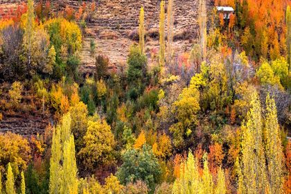 ییلاق تهران در آغوش پاییز سرد +تصاویر