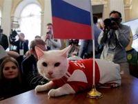 آشنایی با حیوانات پیشگوی جامهای جهانی