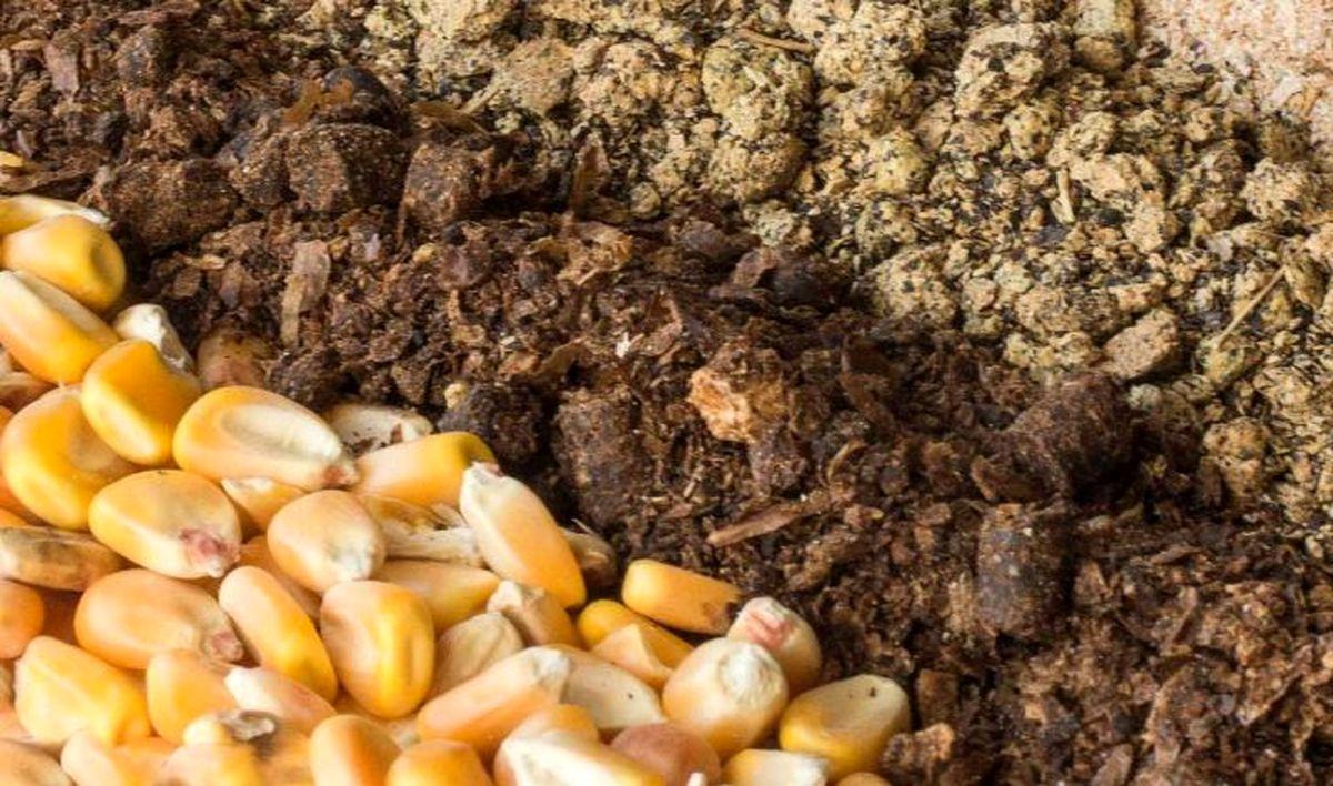 اختصاص ۴۰درصد نهادهها به کارخانجات تولیدی خوراک دام و طیور