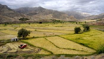 ۷۰درصد اراضی کشاورزی کشور فاقد سند است