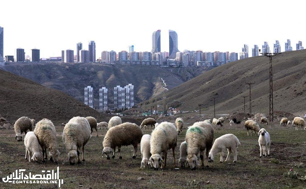 برترین تصاویر خبری ۲۴ ساعت گذشته/ 23 فروردین