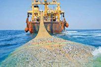 اقدامات مجلس دهم برای توقف صید ترال چه بود؟