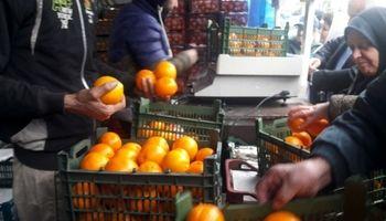 همه آنچه باید در مورد میوههای تنظیم بازار بدانید