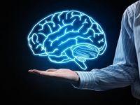 عاداتی که مغز را تغییر میدهند