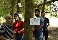 پارک جنگلی محمود آباد فروخته شد +تصاویر