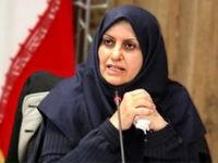 پیروزبخت: استاندارد مورد نیاز معادن در ایران وجود دارد