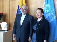 دیدار ظریف با رئیس مجمع عمومی سازمان ملل