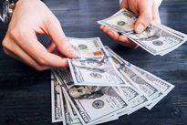 ۲۰ میلیارد دلار؛ میزان ارز خانگی در کشور