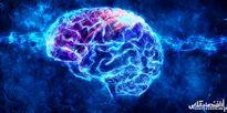 ۶ پیشنهاد برای فعال نگه داشتن حافظه