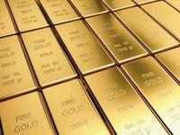 طلا؛ تنها محبوب سرمایهگذاران جهان/ افزایش ارزش جهانی با وجود بحران کرونا