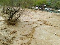 مرگ ۲کودک بر اثر سیلاب در گلستان
