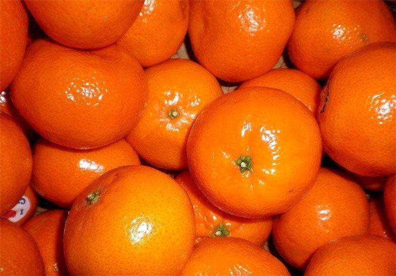 هشدار درباره عرضه نارنگی های رنگ شده در بازار/ حذف نارنگی از لیست کشف قیمت برای مقابله با تخلف