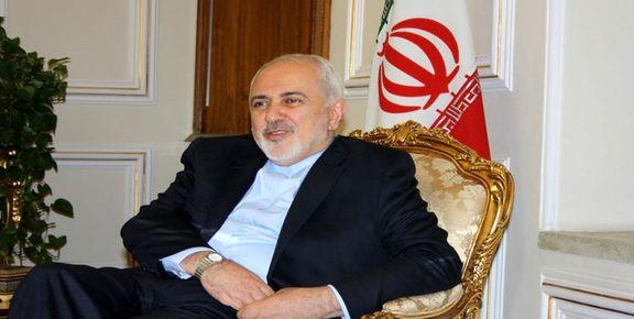 دیدار هادی عامری و جمعی از نمایندگان پارلمان عراق با ظریف