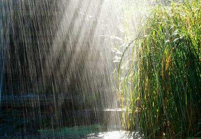 هشدار هواشناسی از وقوع تندباد و بارش برفو باران در روزهای آغاز سال