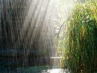 بارشها از فردا آغاز میشود